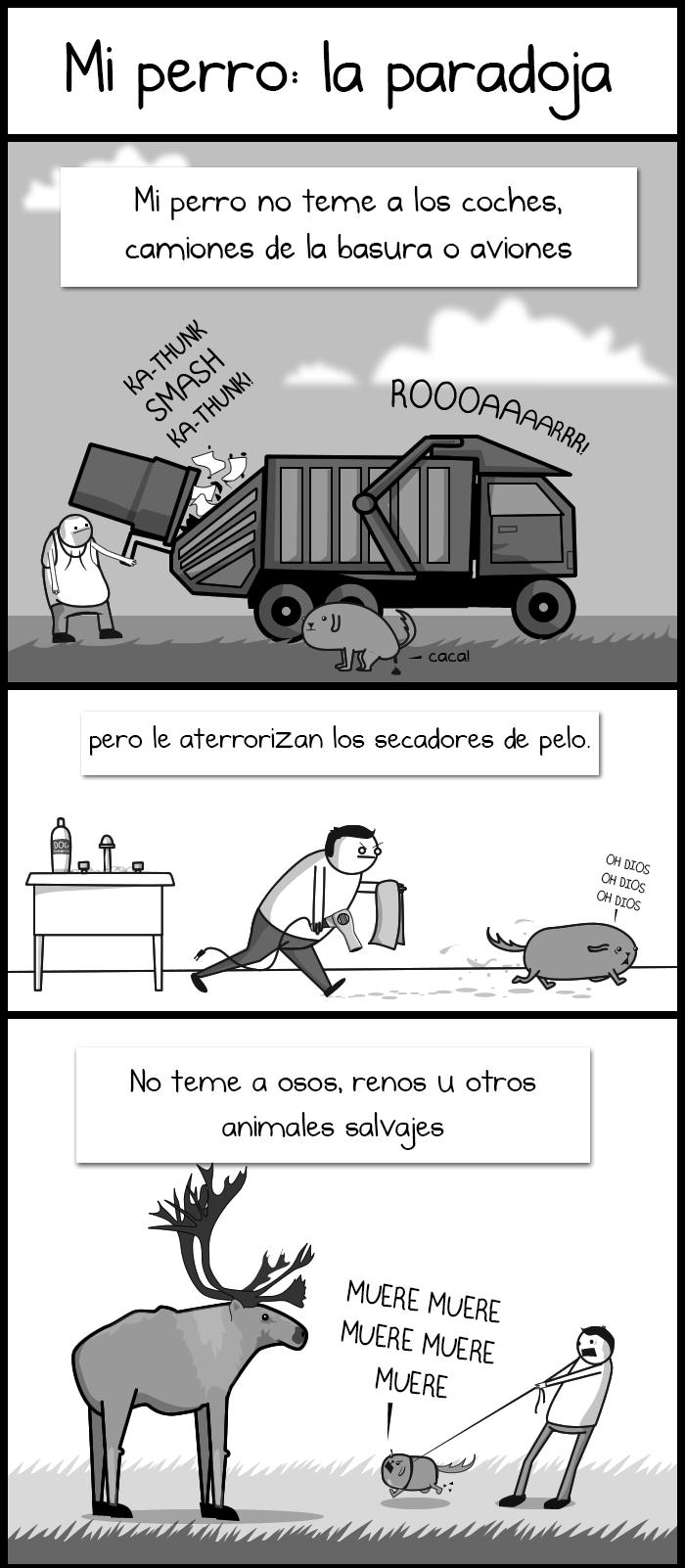 El Paradox 1