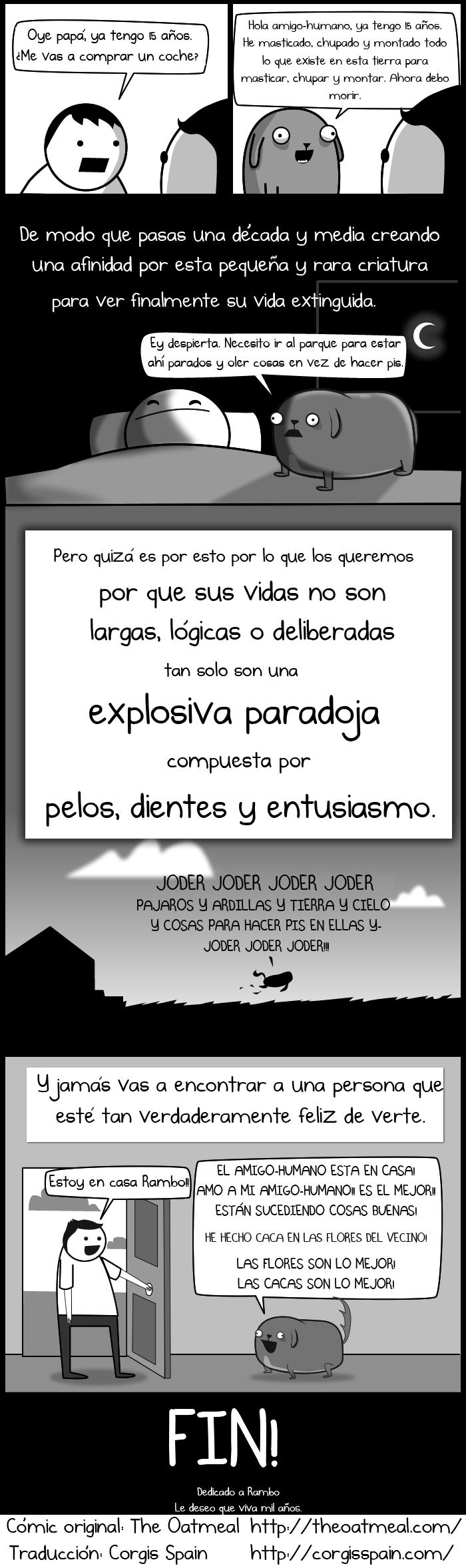 El Paradox 7