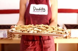 Miguitas-bandejas-de-galletas