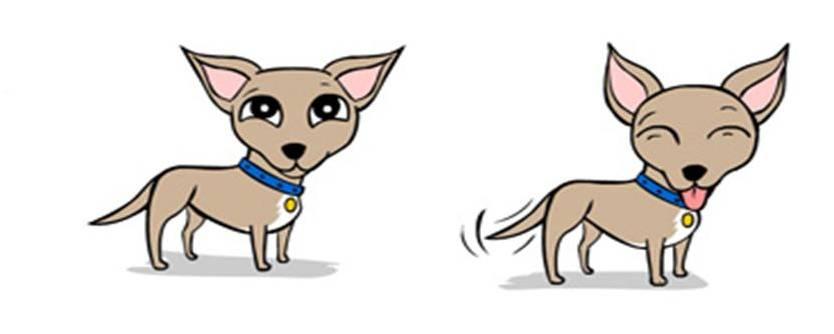 lenguaje canino, como comportarse ante un perro