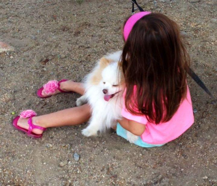 terapia asistida con perros, terapia con animales, niños y perros
